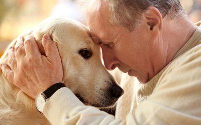 Surprising Benefits of Pet Ownership For Seniors