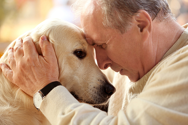 Surprising Benefits of Pet Ownership For Seniors